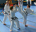 Taekwon-Do Landesmeisterschaft Uetersen 2014 01.jpg
