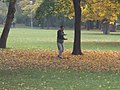 Tai Chi in Budapest City Park.jpg