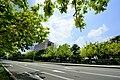 Taichung, North District, Taichung City, Taiwan - panoramio (32).jpg