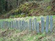 Talyllyn fencing - 2008-03-18