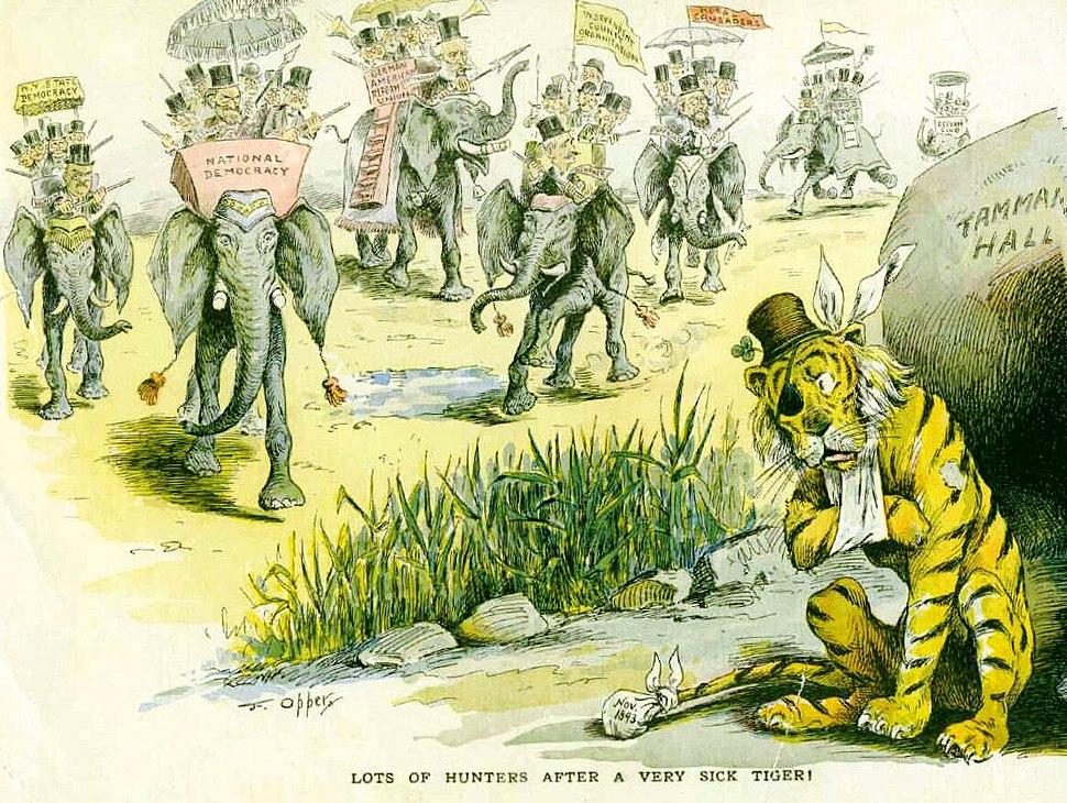Tammany Tiger Hunted 1893