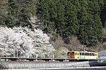 Tarumi Station (Gifu) and haimo230-313 with Sakura.jpg