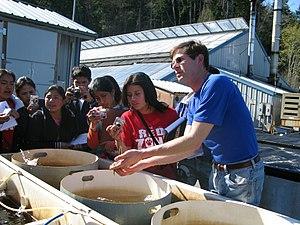 Taylor Shellfish Company - Visitors at a Taylor Shellfish Farms hatchery