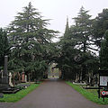 Teddington Cemetery, London.jpg
