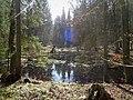 Teich beim Hessenstein.jpg