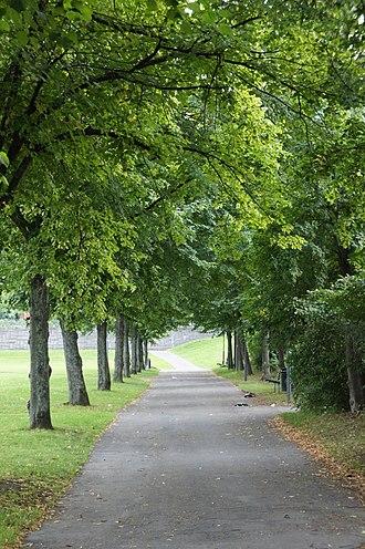 Tensta - Image: Tensta sidewalk with trees