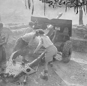 Ayrshire (Earl of Carrick's Own) Yeomanry - 25-pdr of 152nd Field Regiment (Ayrshire Yeomanry) in action during the assault on the Gustav Line, 13 May 1944. Note the new flash eliminator on the gun.