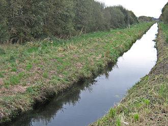 Glastonbury Canal - The canal crossing Street Heath