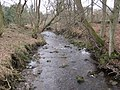 The Ham Burn near Whitley Mill - geograph.org.uk - 1737897.jpg