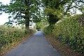 The Lane - geograph.org.uk - 1549181.jpg