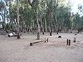 The National Park (Ramat Gan)026.jpg