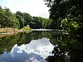 The River Ayr - geograph.org.uk - 851095.jpg