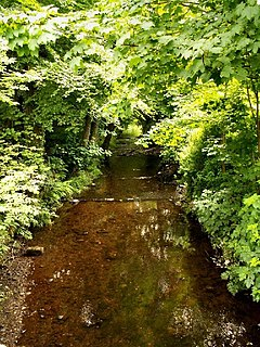 River Menalhyl river in Cornwall, United Kingdom