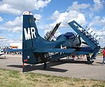 The Skyraider (530195783).jpg