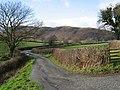 The Track To Caen-y-mynydd - geograph.org.uk - 313921.jpg