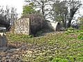The old decoy shelter at Claverham Drove - panoramio.jpg