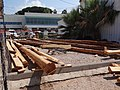 The wooden logs for building a replica of the Ma'agan Michael Ancient Ship (1).JPG