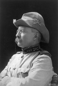 Col. Theodore Roosevelt. Crop of :Image:Theodo...