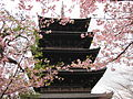 To-ji National Treasure World heritage Kyoto 国宝・世界遺産 東寺 京都153.JPG