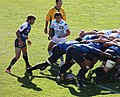 Top 14 - Demi-finale - Racing Métro 92 - Montpellier.jpg