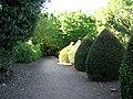 Topiary beside footpath - geograph.org.uk - 1876489.jpg