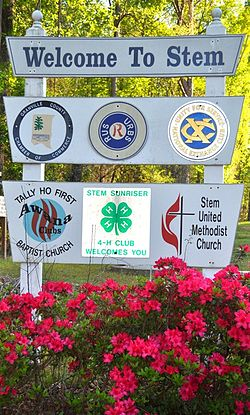 Town of Stem Sign.jpg