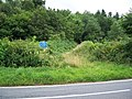 Track off B4300 east of Llanarthne - geograph.org.uk - 1417361.jpg