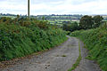 Track to Cornel farm - geograph.org.uk - 999162.jpg