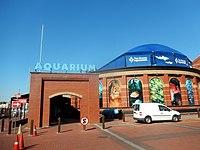 Two Oceans Aquarium.jpg