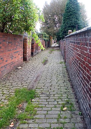 Levenshulme - A typical back entry