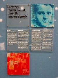 Ulmer DenkStätte Weiße Rose im Foyer des EinsteinHauses der Ulmer Volkshochschule Hans Scholl.jpg