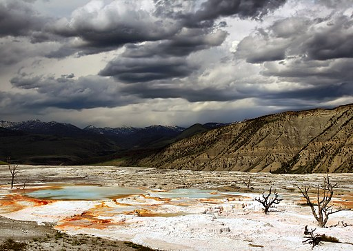 Upper Terraces of Mammoth Hot Springs, Yellowstone