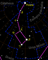 Ursa Minor constellation map negative.png