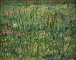 Van Gogh - Patch of grass.jpg