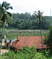 Varkala Shree Janardhana Swamy temple pond view.jpg