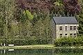 Verdure à l'étang du Moulin (28153821755).jpg