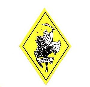 VF-142 - VF-142 insignia