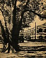 View at Tainan Theological College and Seminary.jpg