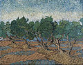 Vincent van Gogh - Olive grove - Google Art Project.jpg
