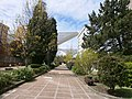 Vista de la calle Sara Suárez Solís.jpg