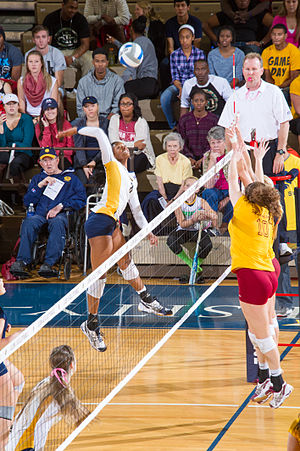 Midwestern State Mustangs - The Mustangs women's volleyball team in action against the Texas A&M–Commerce Lions in 2013