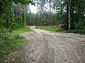 WILCZE ŁUGI wiosna 27 - panoramio.jpg