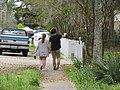 Walking in Mandeville Louisiana.jpg