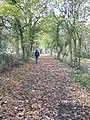 Walking the line - geograph.org.uk - 694301.jpg