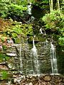 Waterfall-Campground-2-Seneca - West Virginia - ForestWander.jpg