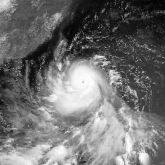 1983 Pacific typhoon season - Image: Wayne 1983072403GMS2VS