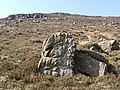 Weathered stone on moor - geograph.org.uk - 59802.jpg
