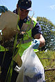 Week in the Life of the Coast Guard 2014 140828-G-ZZ999-006.jpg