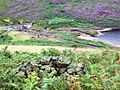 Weir amongst the Heather - geograph.org.uk - 37870.jpg