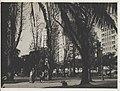 Werner Haberkorn - Vista parcial da Praça da República. São Paulo-SP.jpg